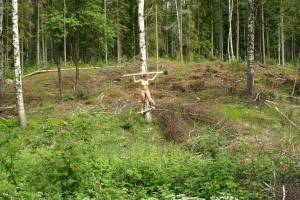 Crucified-in-the-Woods%2C-and-left-behind-%5Bx55%5D-46wpbvqkff.jpg