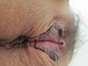 Meaty-Pussy-Lips-x35-k7ad736oq5.jpg